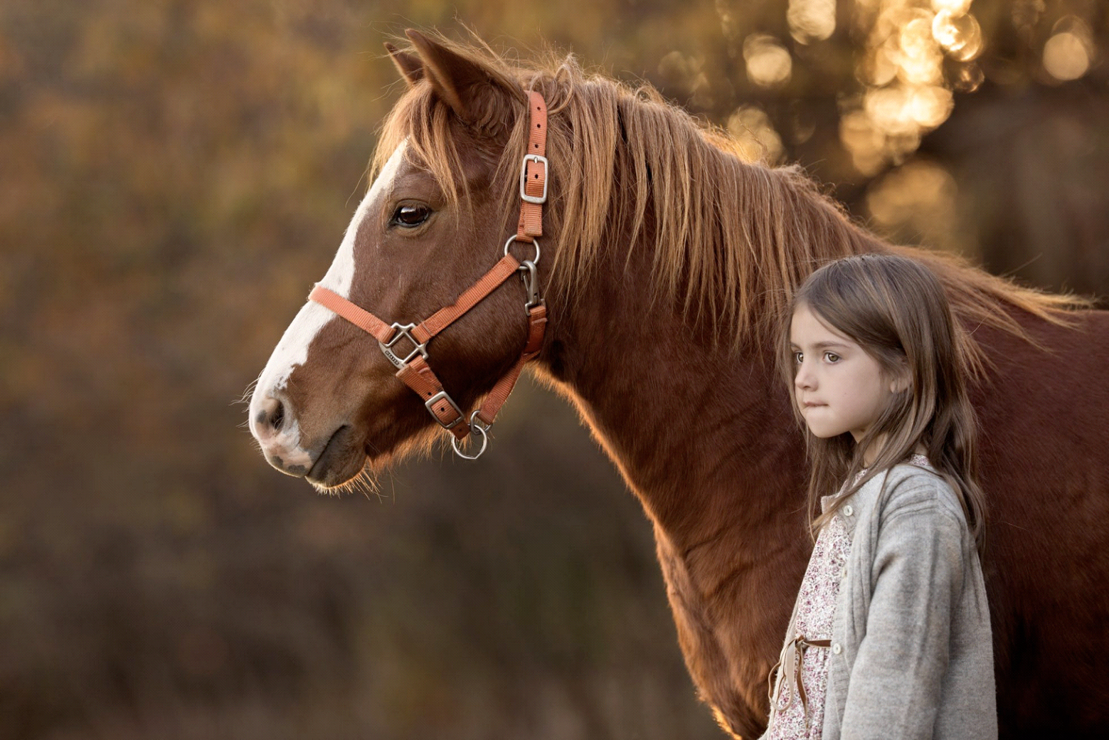 Young girl with her first pony in the sunset