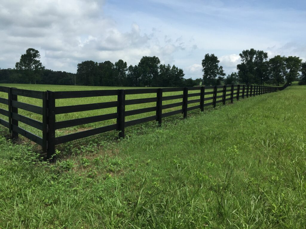 Black Steel Fencing - Stock and Noble
